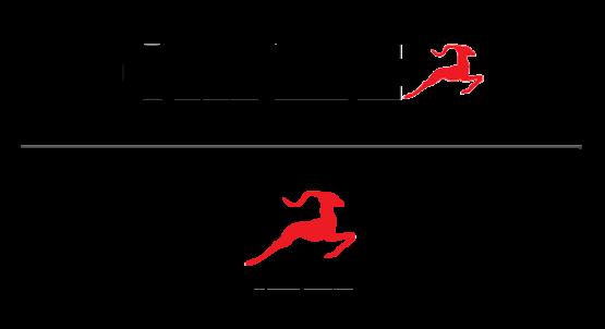 Logotyp för Caperi