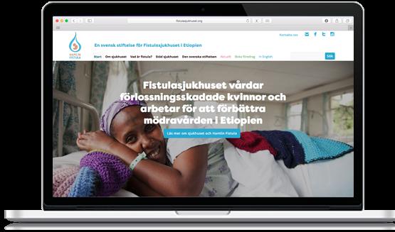 Stiftelsen Fistukasjukhuset